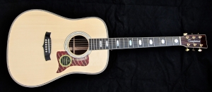 tanglewood-tw1000hsre-e28093-full-front
