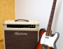 Review: Bluetone Amps Princeton Reverb