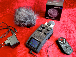 Zoom H6 – accessory pack